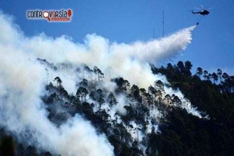 Se desploma helicóptero de la Semar en San Luis Potosí